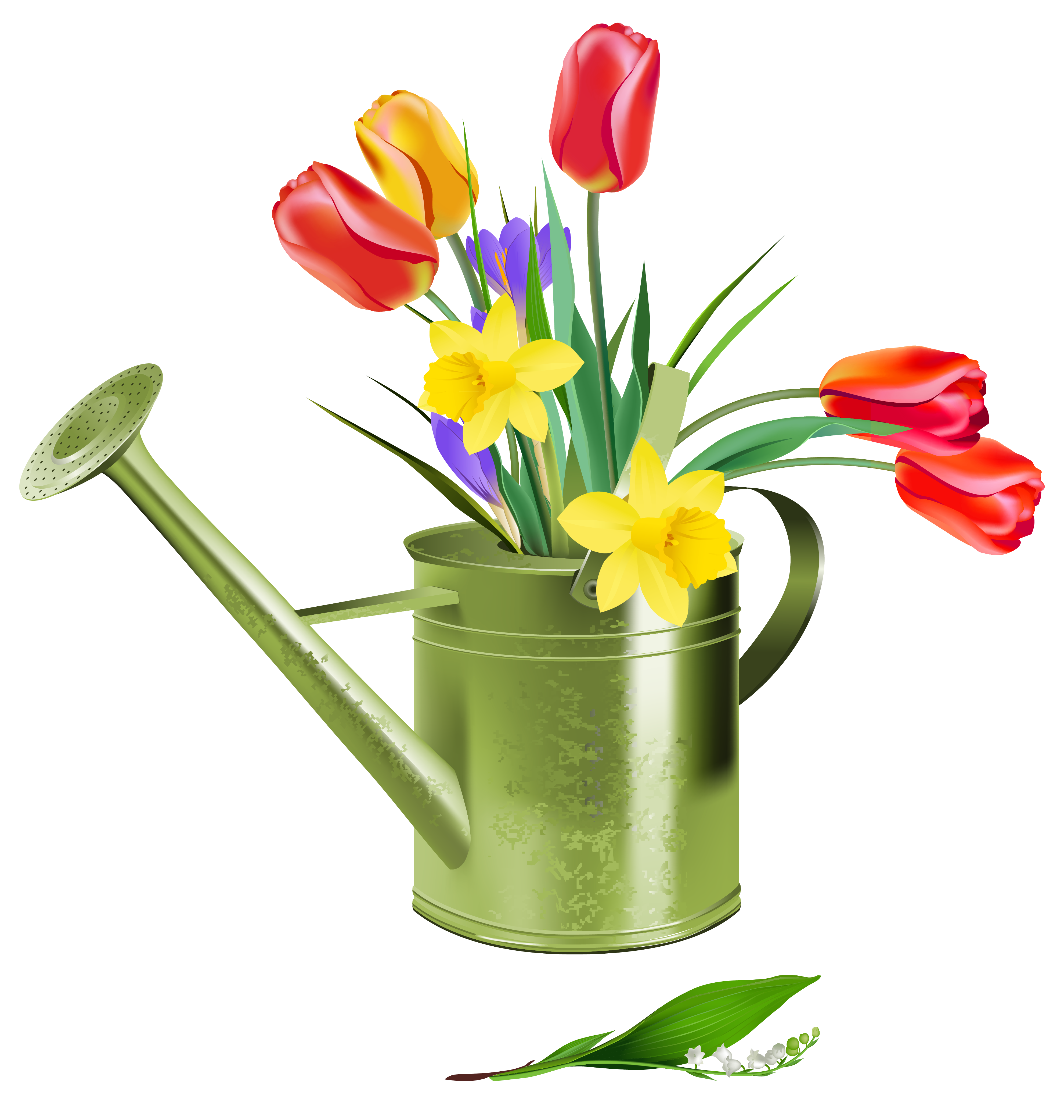 Watering Can clipart spring Gallery Can Spring PNG Flowers