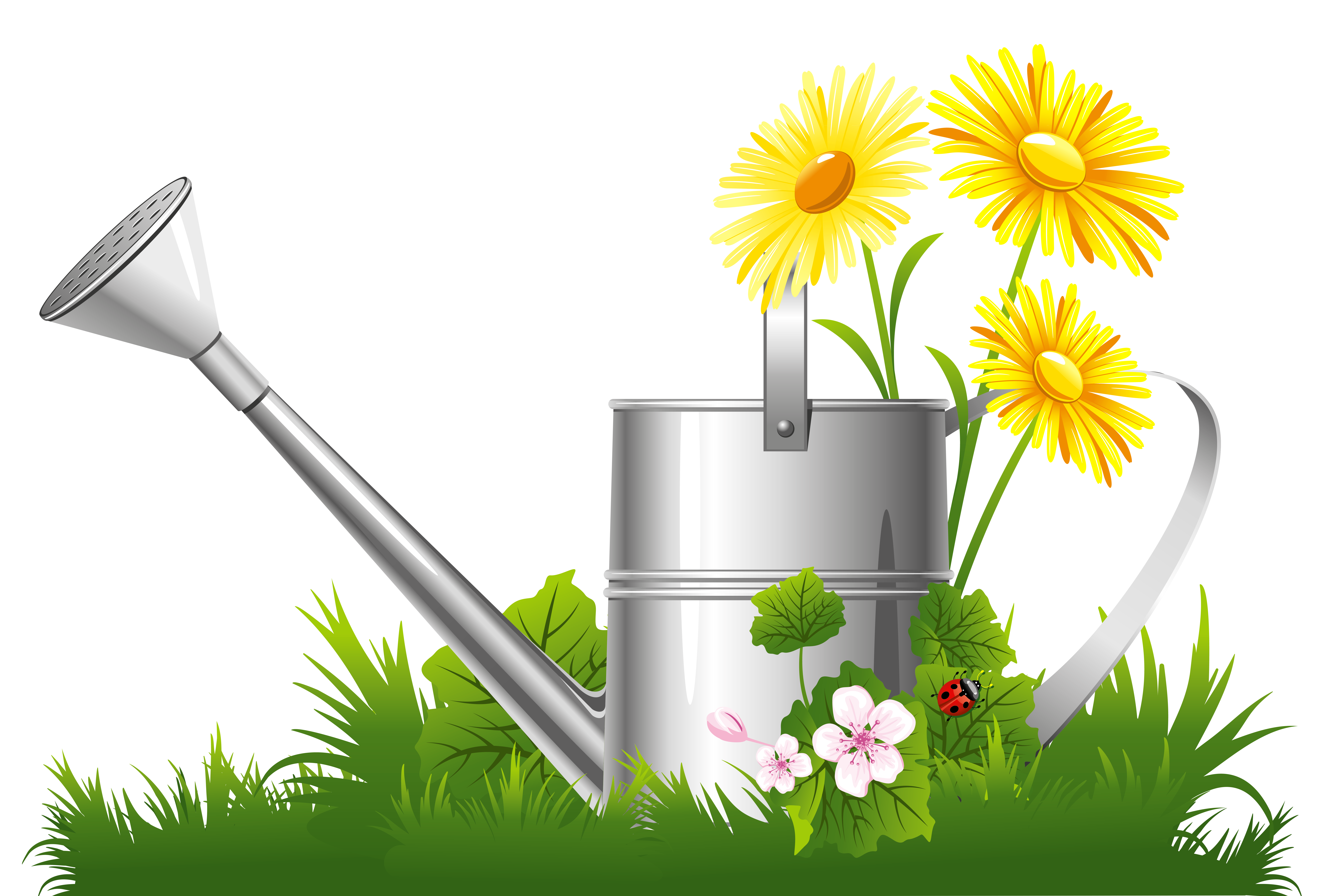 Watering Can clipart transparent PNG Spring Tags: Decoration Flowers