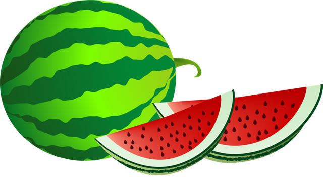 Watermelon clipart Photo 3 Watermelon watermelon art