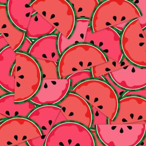 Watermelon clipart paper Digital Clip Paper design set