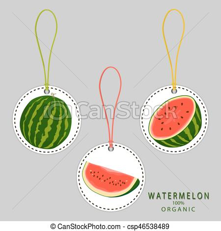 Watermelon clipart red fruit Watermelon Vector fruit Vector