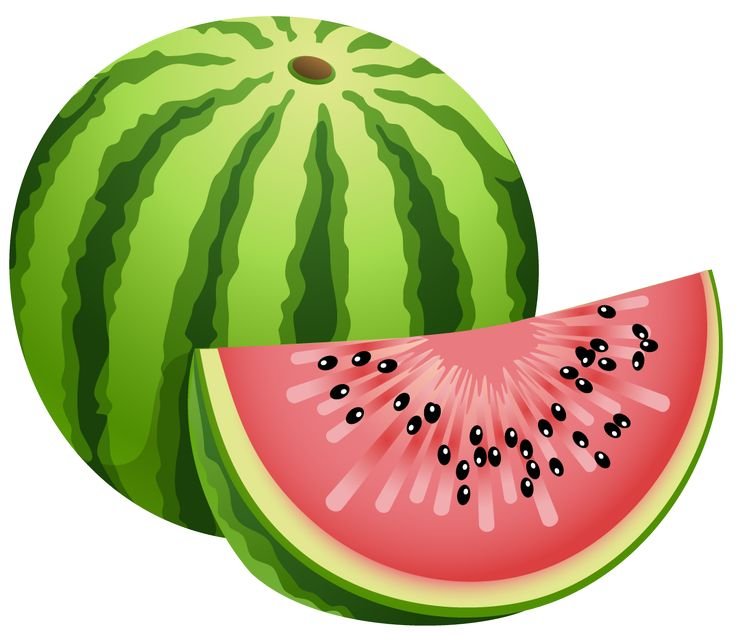 Watermelon clipart single vegetable Images watermelon Pinterest best on