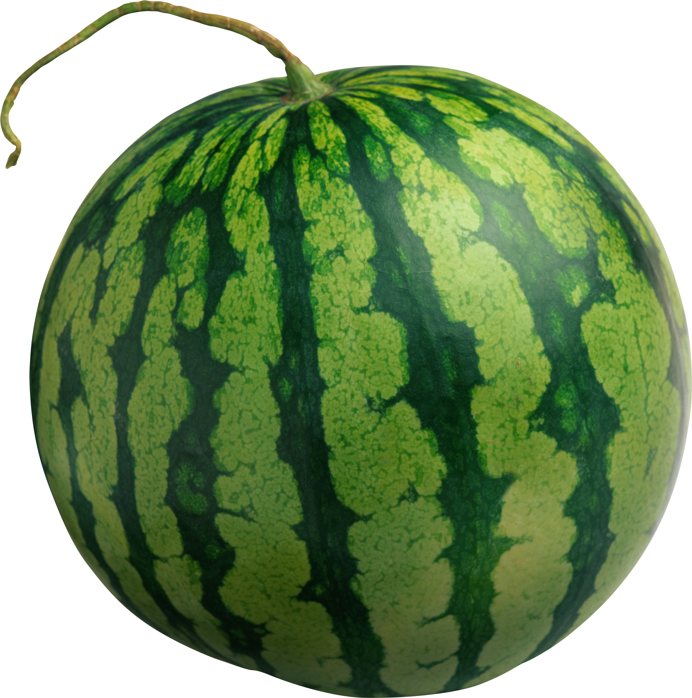 Watermelon clipart transparent background Watermelon Isolated Watermelon Gallery noBACKS