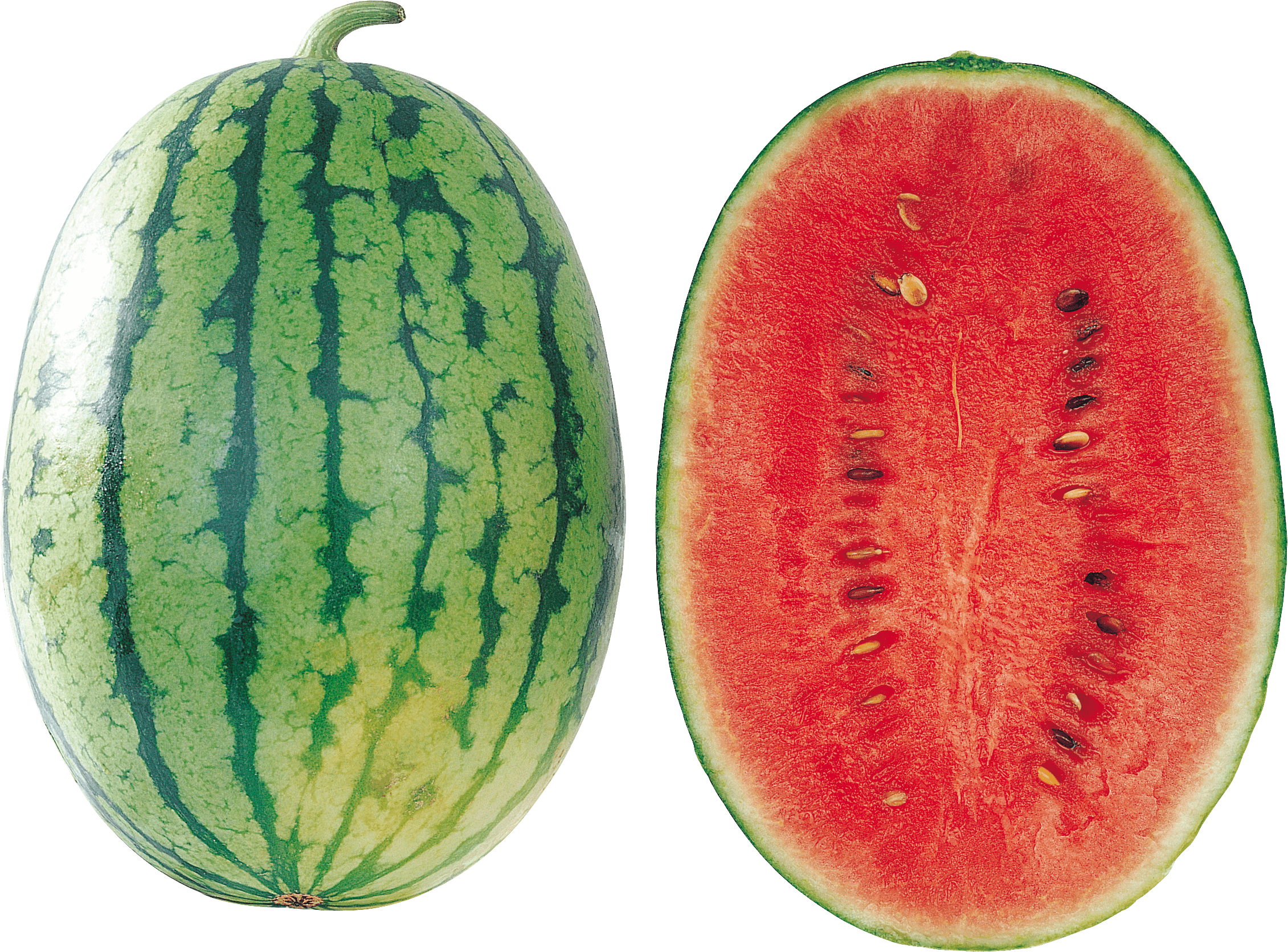 Watermelon clipart transparent food Isolated PNG StickPNG Large Open