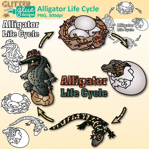Way clipart the life {Teach Habitats and Groups and