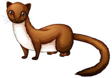 Weasel clipart Clipart Weasel Clipart Free Panda
