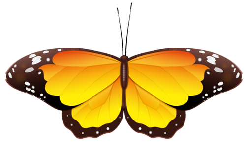 Gallery clipart yellow butterfly Yellow Free Clip Art art