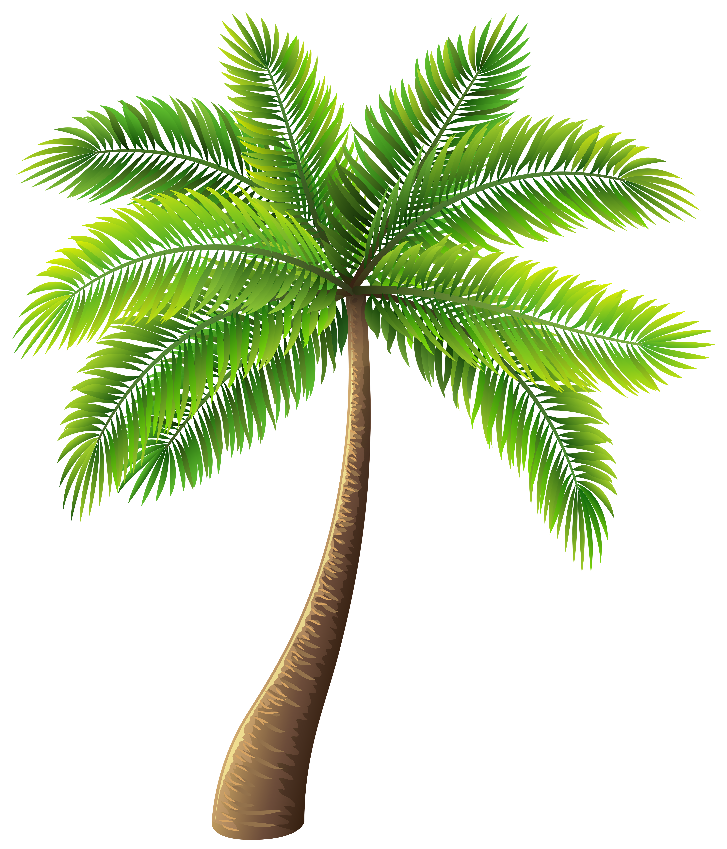 Art Clip PNG Tree WEB