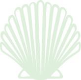 Wedding clipart seashell Printable Seasons Green Images Seashell