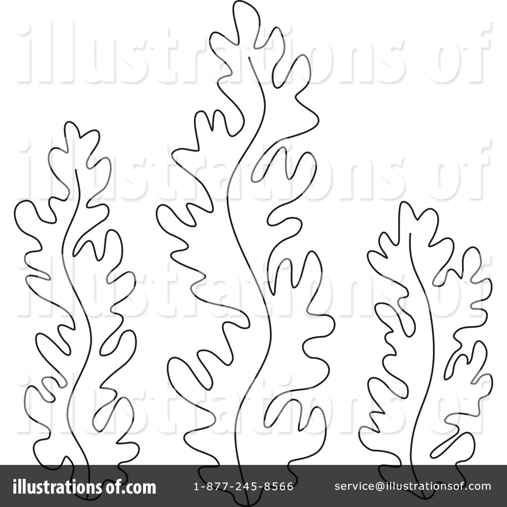 Drawn seaweed seagrass Seaweed Coloring Pages Coral And