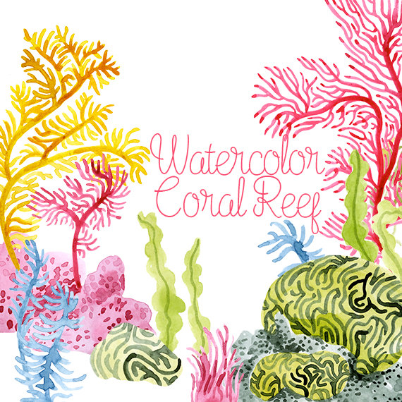 Anemone clipart black sea Watercolor Etsy Corals art Reef