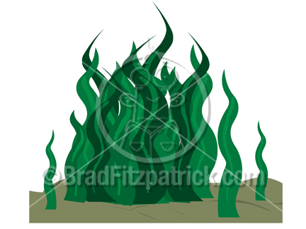 Drawn seaweed clipart Free Cartoon Clipart  Sea