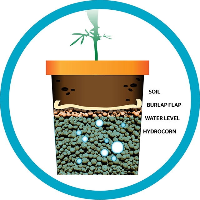 Weed clipart water Other layer – Hack: dual