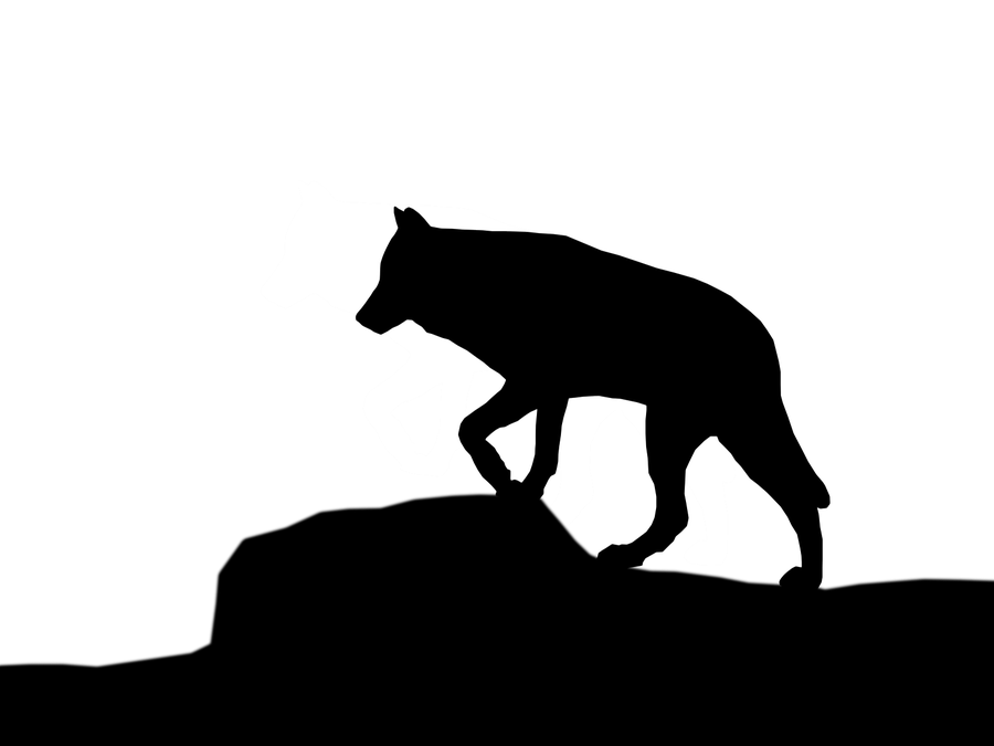 White Wolf clipart wolf silhouette #14