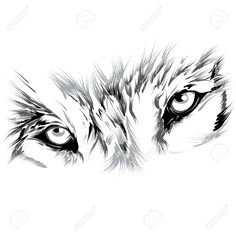 White Wolf clipart monochromatic Free Vectors image vector Free