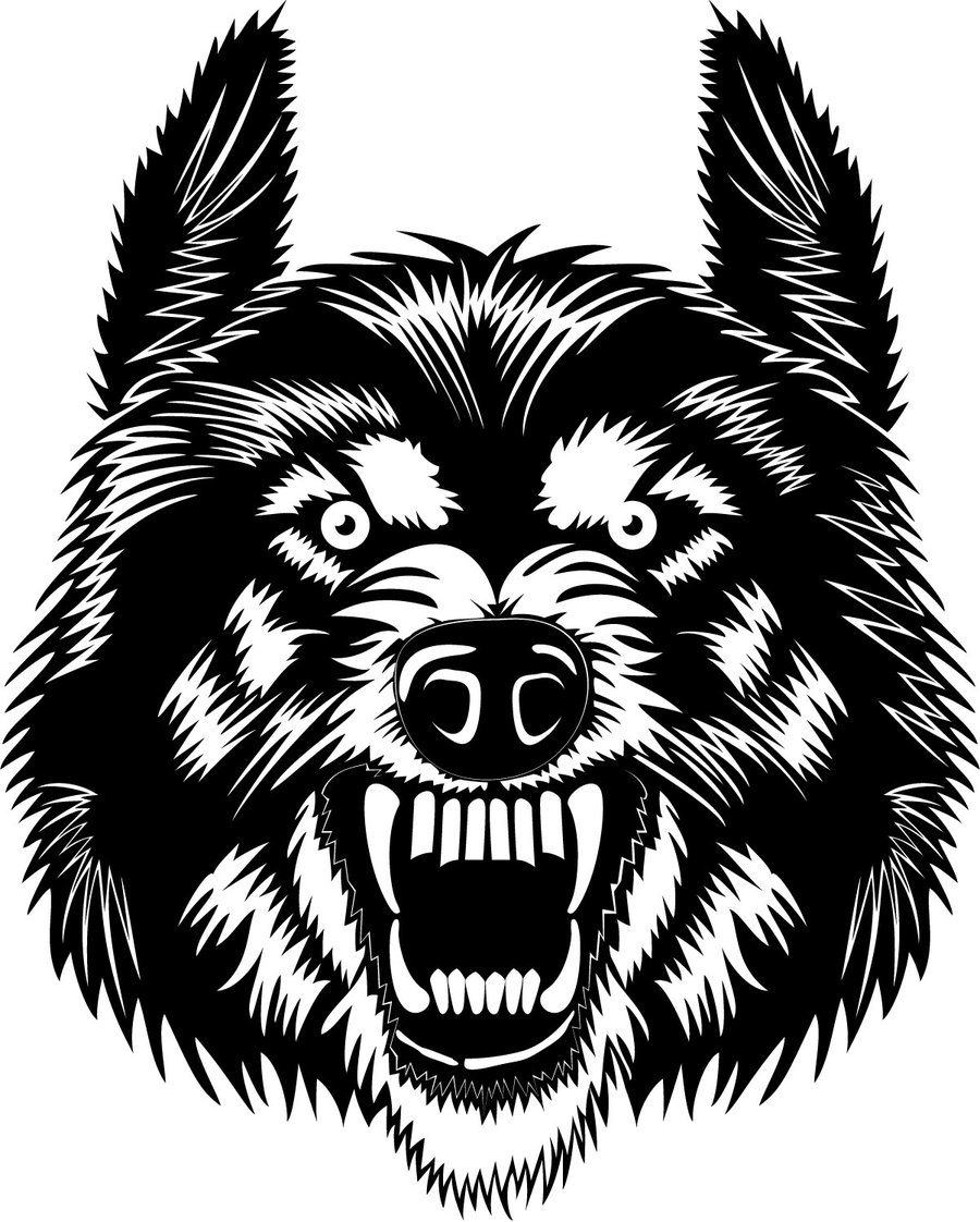 White Wolf clipart wolf head  Clip Free Clipart Free