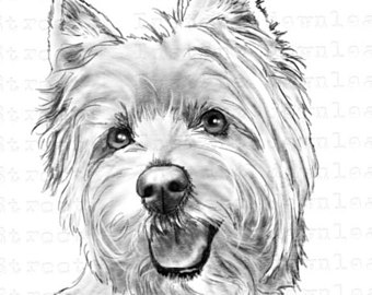 West Highland White Terrier clipart Clipart PNG Digital Westie West
