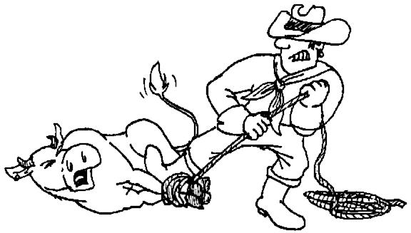 Western clipart bull #14