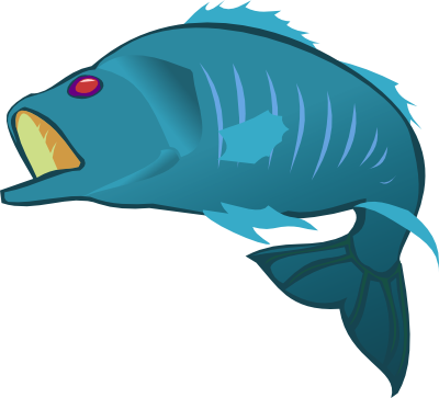 Fins clipart different fish Clipart Seafood background collection Bass