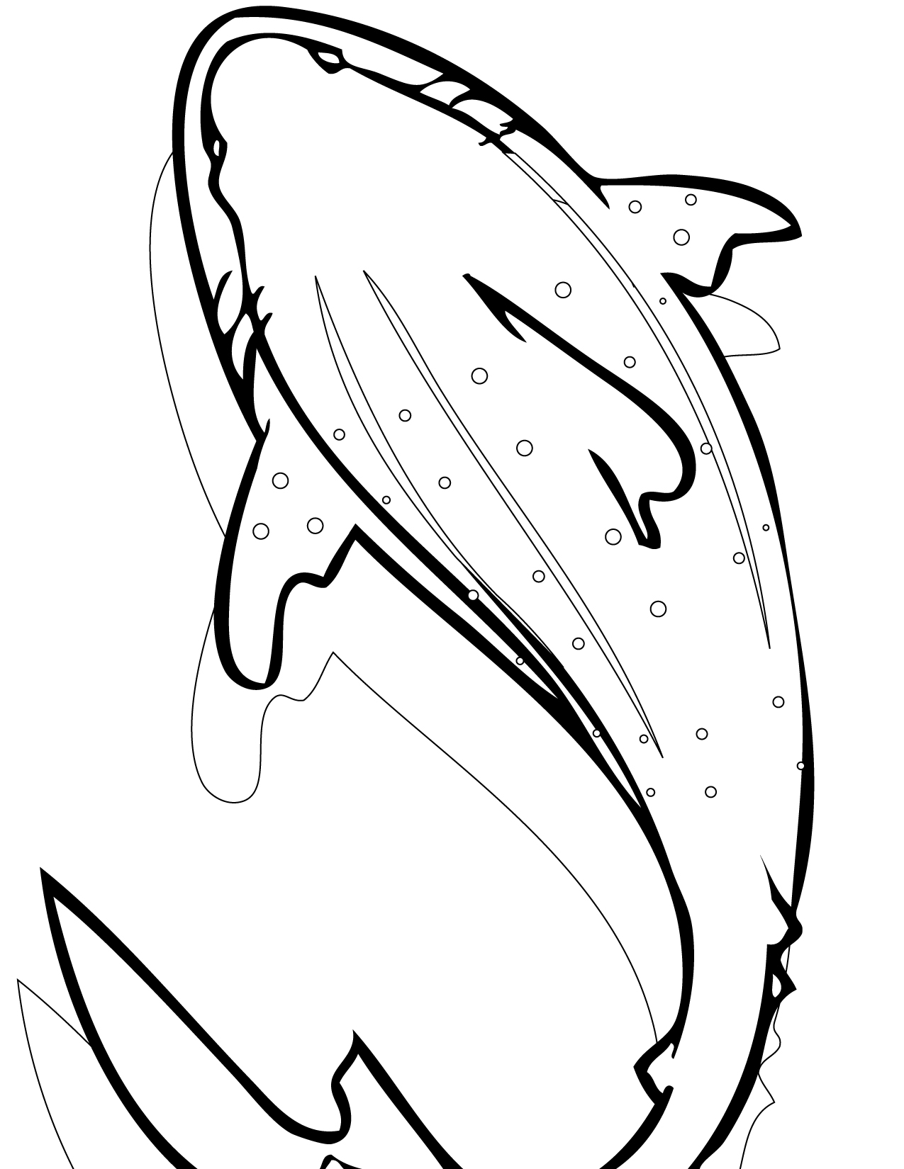 Sharkwhale clipart coloring #4