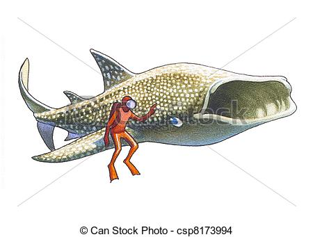 Sharkwhale clipart large #13