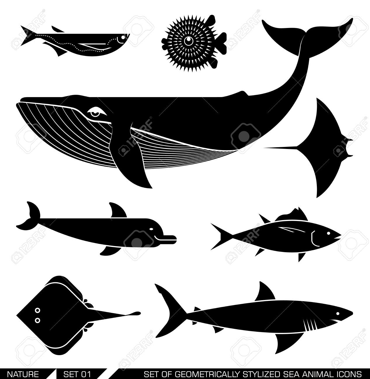 Sharkwhale clipart whale spout #8