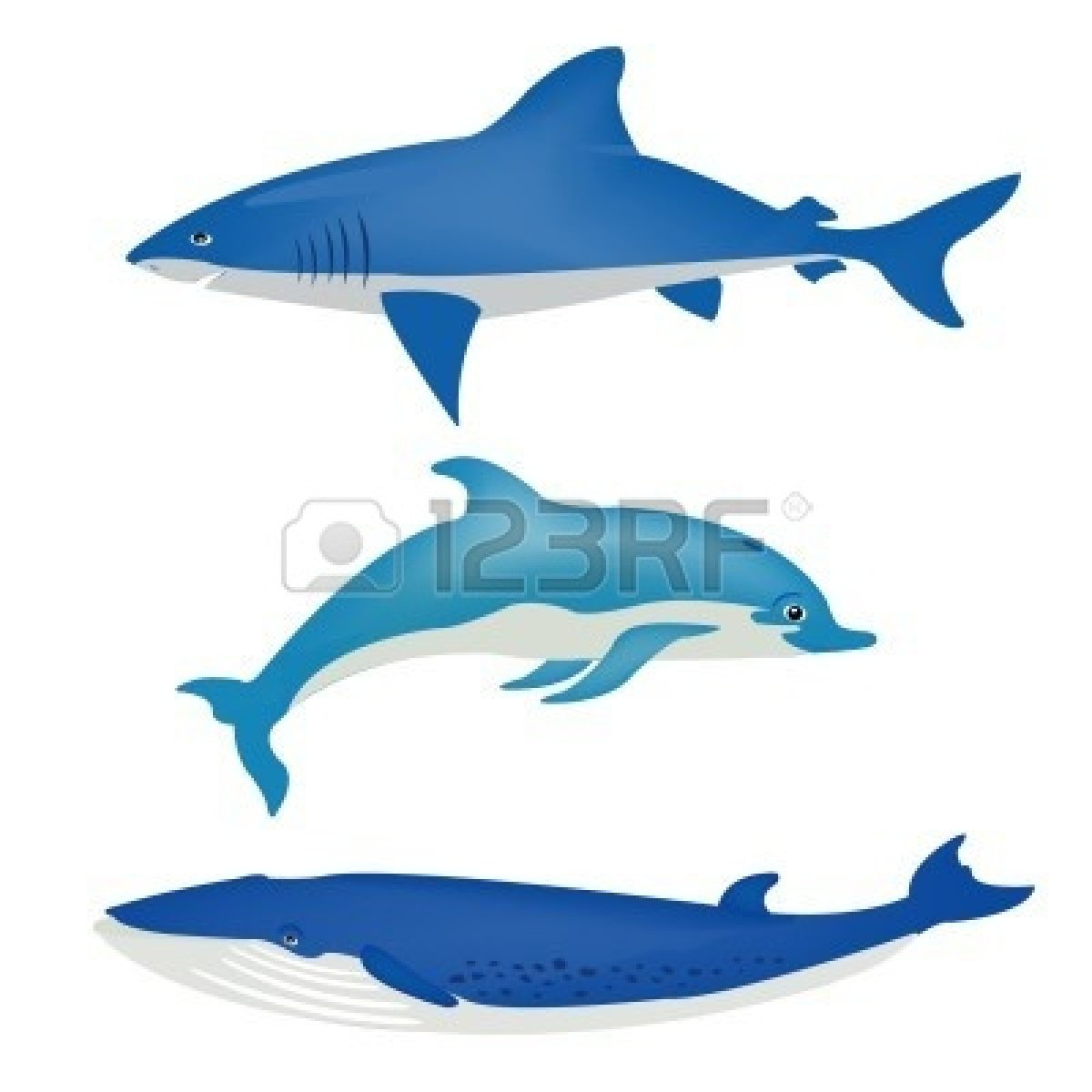 Sharkwhale clipart whale spout #5