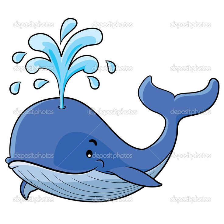 Beluga Whale clipart comic Not of whale water cartoon