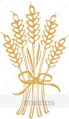 Wheat clipart Menu Thanksgiving Wheat Wheat Images