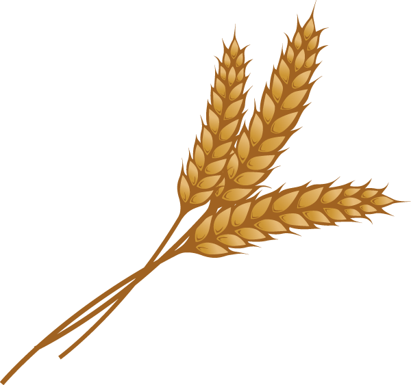 Grain clipart wheat bundle Www Png com Images: Stalk