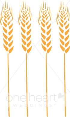 Grain clipart wheat stalk Clipart Wheat Fall Stalks Wheat