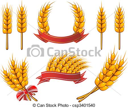 Barley clipart wheat straw Wheat Wheat Wheat Illustrations
