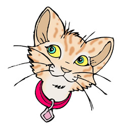 Whiskers clipart Clipart on Clip Art Whiskers
