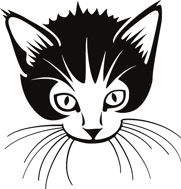 Whiskers clipart Whiskers Art Whiskers Download Clipart