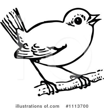 White clipart birdblack White White collection and Black