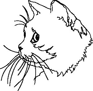 White clipart cat face Clipart Cat Clipart cat%20face%20clipart Panda