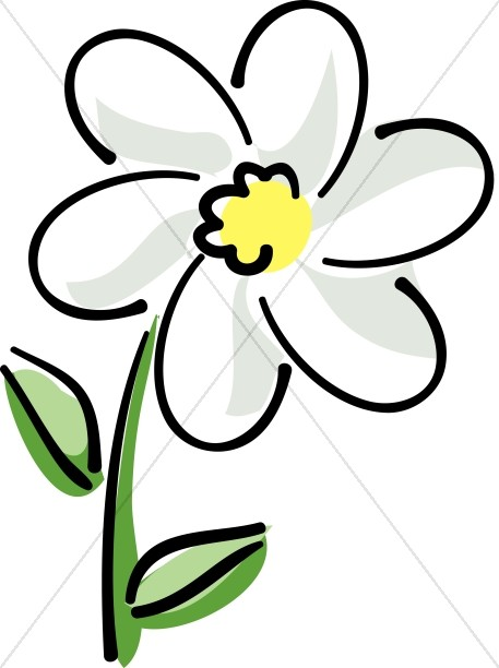 White Flower clipart  White Flower Daisy Church