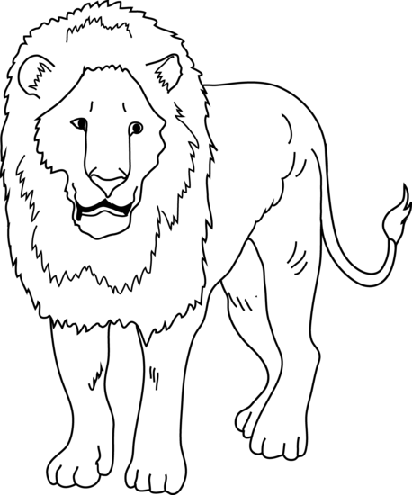 White Lion clipart Lion coloring Download White #3