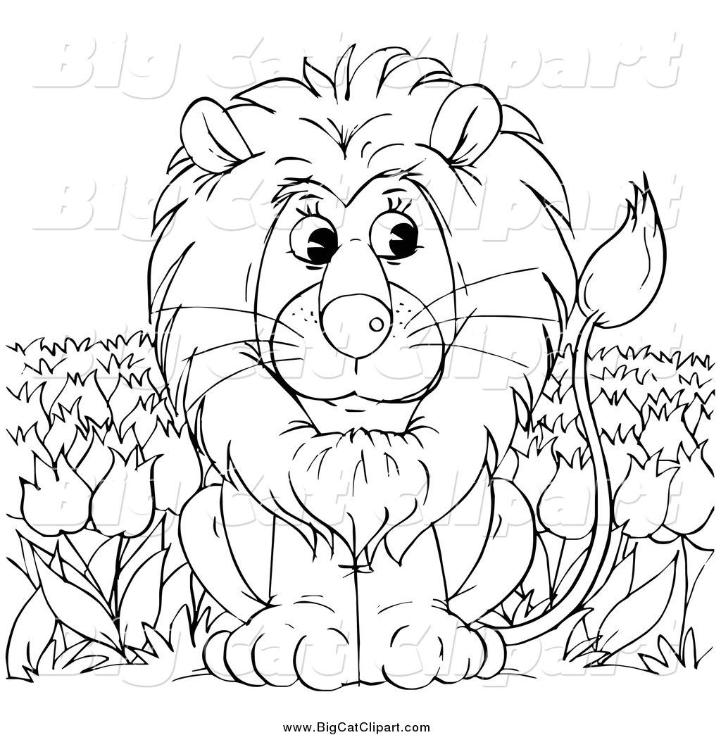 Big Cat clipart lion outline Coloring Lion Download White Download