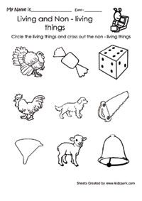 Microsoft clipart non living For Search and worksheets grade