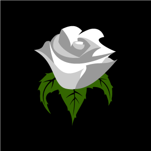 White Rose clipart living thing 101 Clipart Art Rose rose