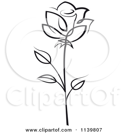 White Rose clipart beauty White Vector Seamartini Free Rose