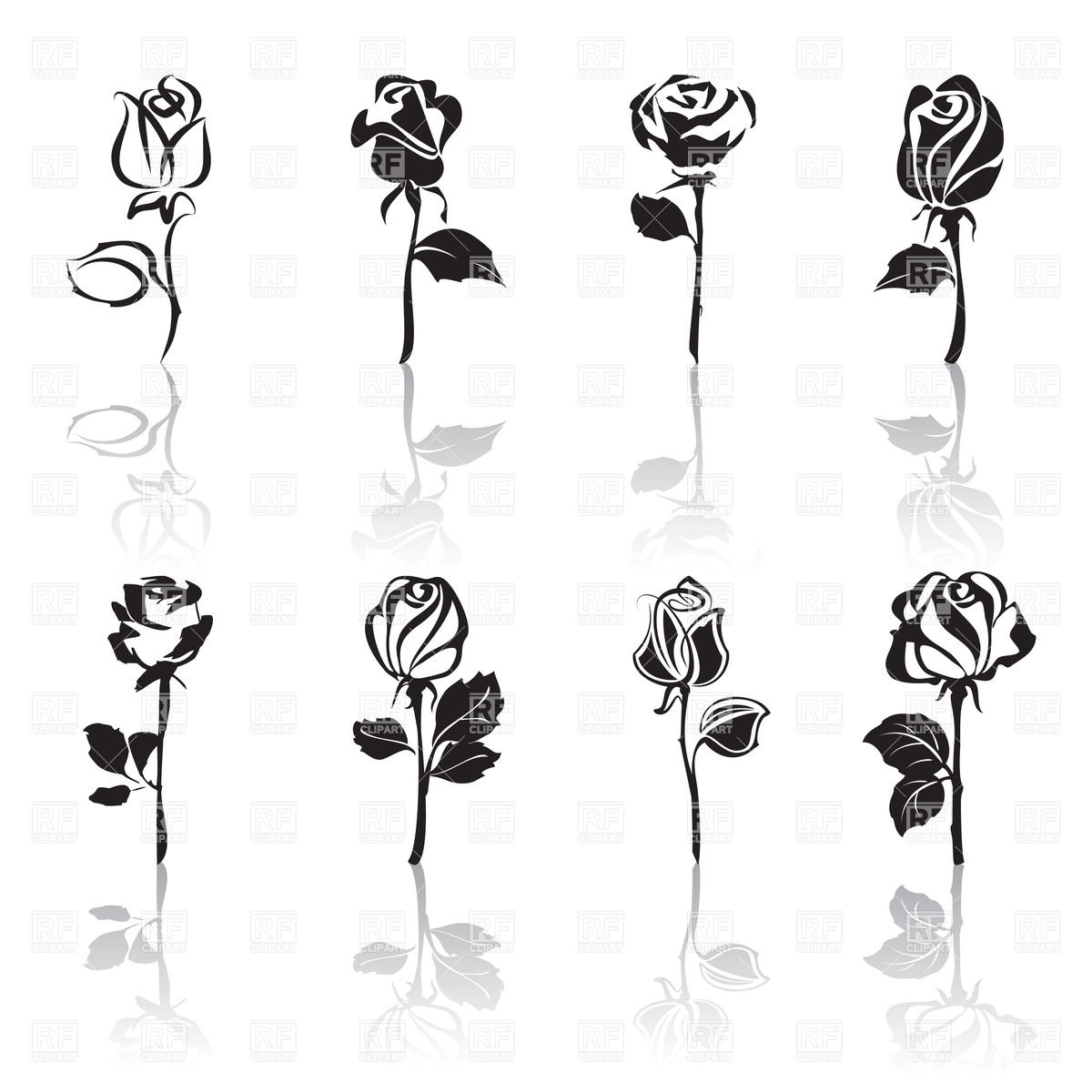 White Rose clipart beauty The Clipart The Outline Beast