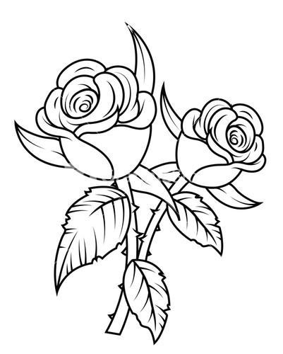 White black white Rose flower
