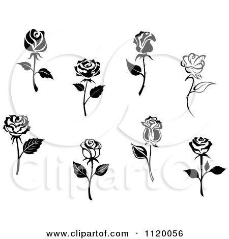 White Rose clipart brown flower #5