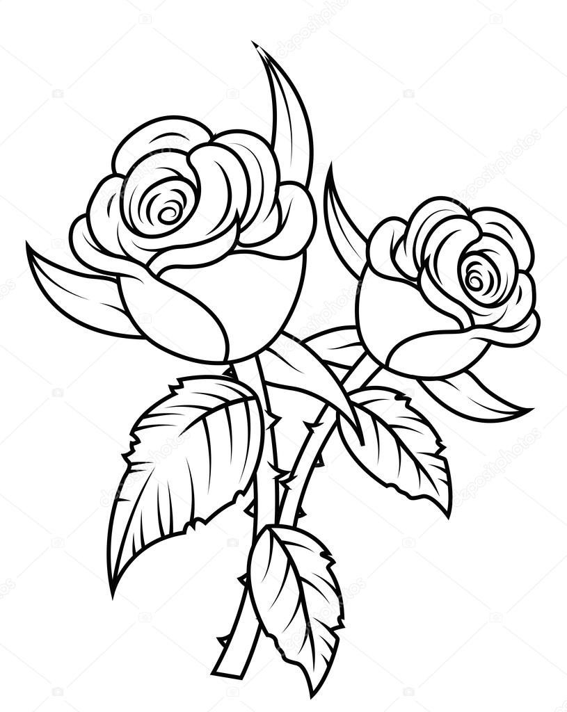 White Rose clipart flower drawing Clipart Nature © Drawing Retro