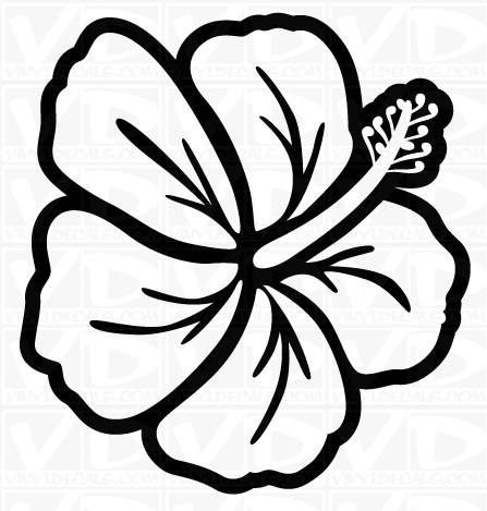 Buttercup clipart hawaiian flower Hawaiian Free Clipart Art Art