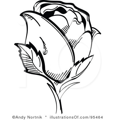 White Rose clipart illustration #2