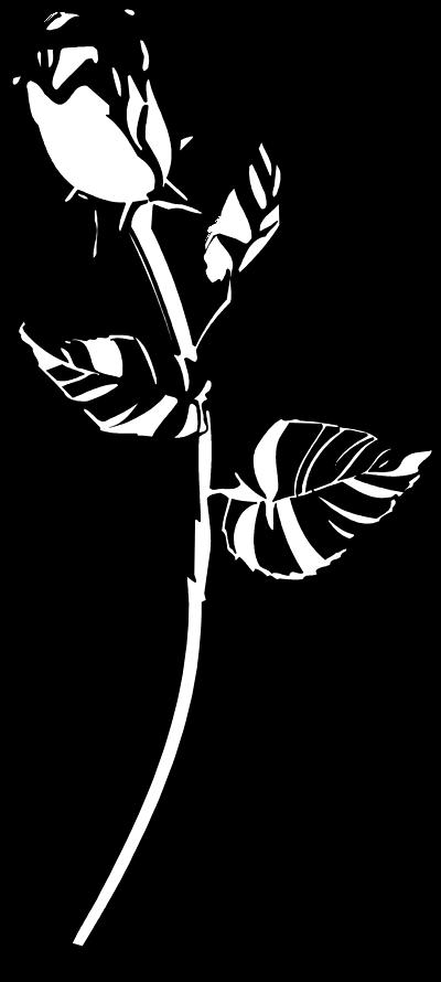White clipart roseblack Roses clip black and Rose