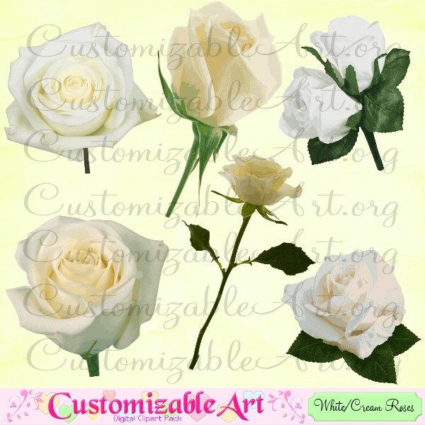 White Rose clipart rose garden Stem art Rose White Digital